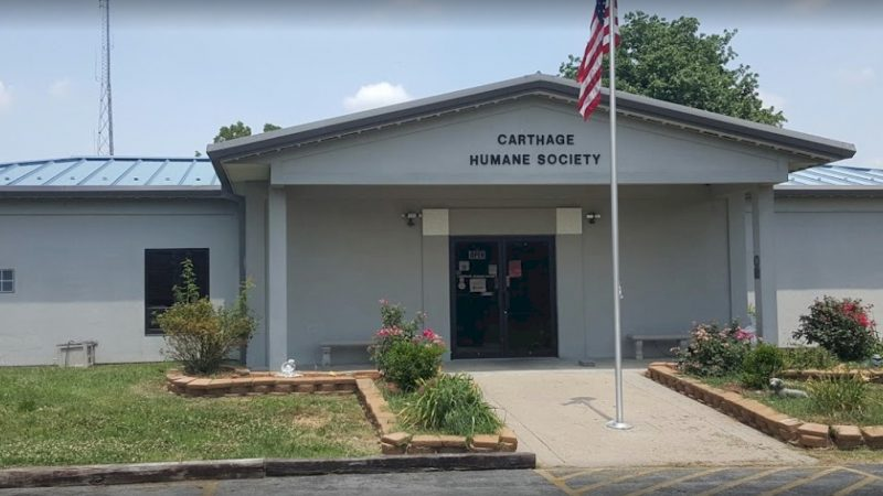 Carthage Humane Society Requests Donations