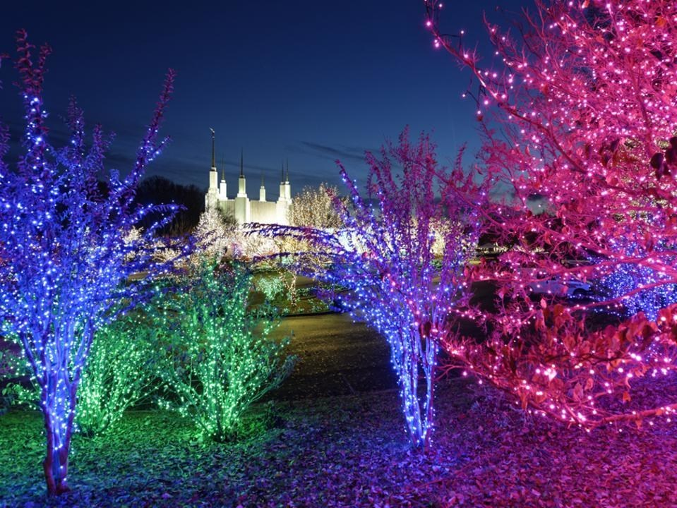 Washington DC Temple Announces Special Drive-Thru Edition of Annual Festival of Lights for 2020