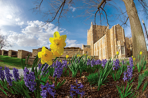 Record your COVID-19 vaccination (employee email) – The University of Tulsa