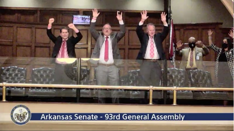 Arkansas Senate calls the Hogs