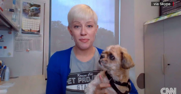 Pupper Makeover Distracts From $8 MILLION KC Pet Project Never Paid