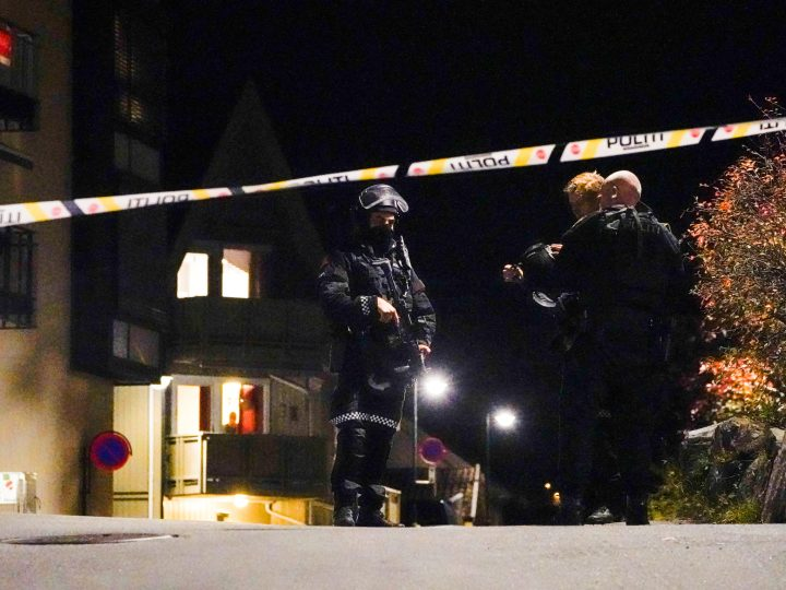 Norway bow-and-arrow attack likely linked to mental illness – police