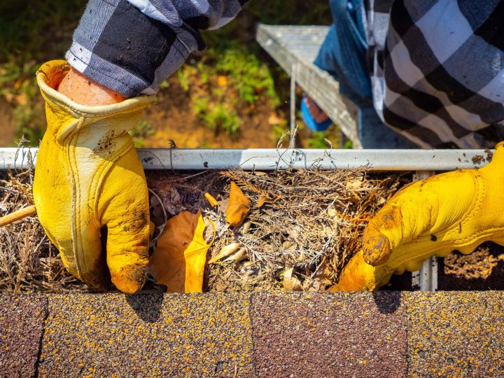 Homeowners should gear up for fall maintenance projects – Oklahoma State University